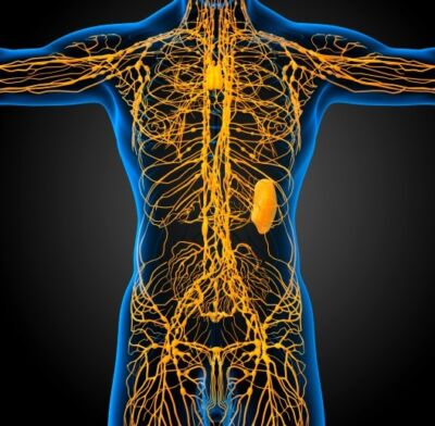 Do pelvic lymph nodes affect disease recurrence in colorectal cancer patients?